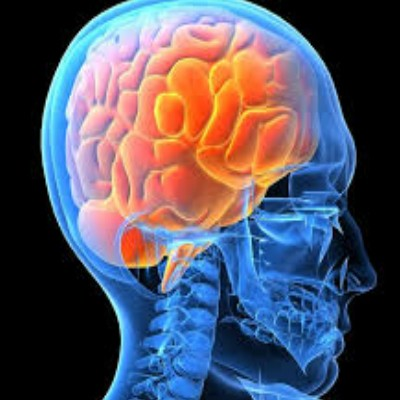 steps to keep your brain healthy