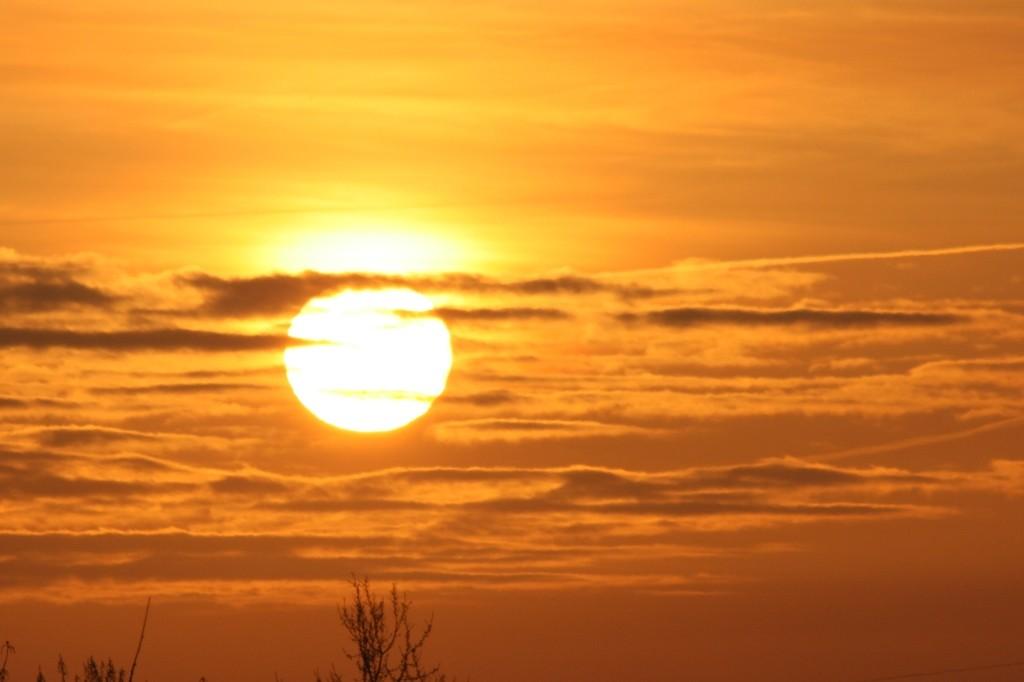Sun a powerful source of vitamins
