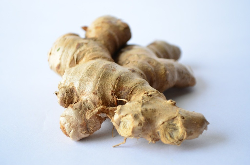 ginger a herb full of benefits
