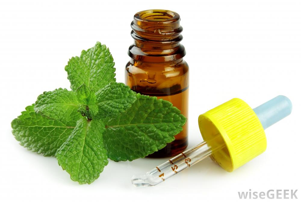 peppermint oil and its benefits